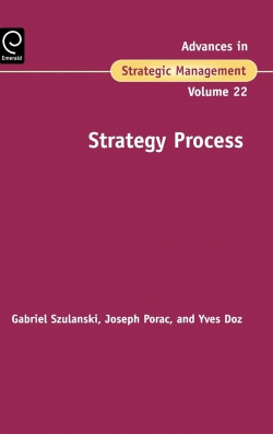 Jacket image for Strategy Process