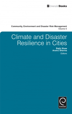 Jacket image for Climate and Disaster Resilience in Cities