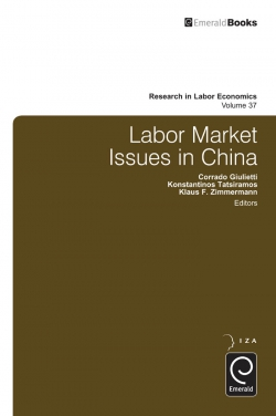 Jacket image for Labor Market Issues in China