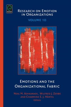 Jacket image for Emotions and the Organizational Fabric