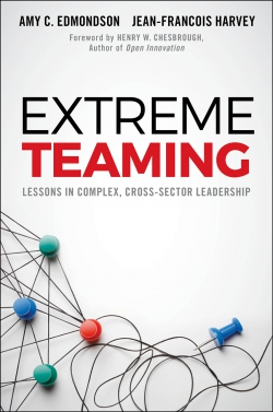 Jacket image for Extreme Teaming