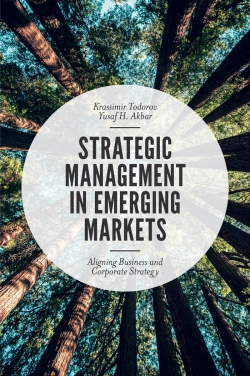 Jacket image for Strategic Management in Emerging Markets
