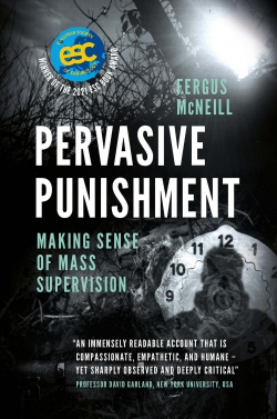 Jacket image for Pervasive Punishment