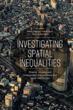 Jacket image for Investigating Spatial Inequalities