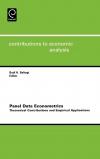Jacket Image For: Panel Data Econometrics