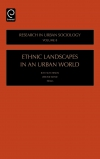 Jacket Image For: Ethnic Landscapes in an Urban World