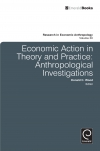Jacket Image For: Economic Action in Theory and Practice