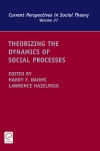 Jacket Image For: Theorizing the Dynamics of Social Processes