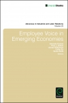 Jacket Image For: Employee Voice in Emerging Economies