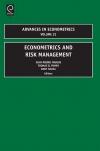 Jacket Image For: Econometrics and Risk Management